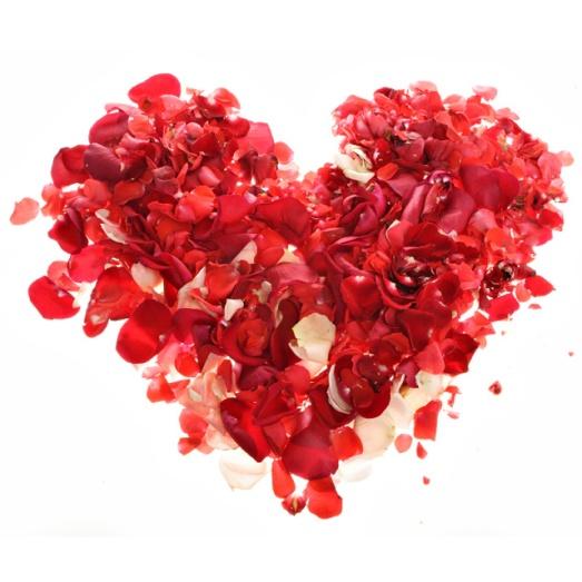 petals love