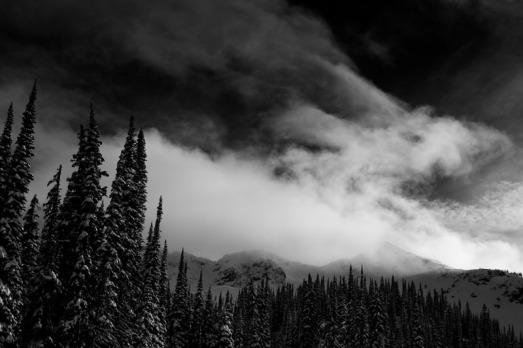 David Jackson Photo-2603