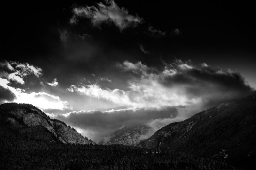 David Jackson Photo-3037
