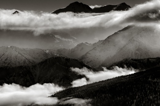 David Jackson Photo-